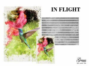 In flight features a beautiful blue and green hummingbird dancing in front of a fabulous pink flower in a green field. the companion paper is vertical greyscale stripes